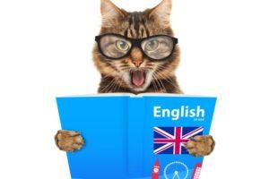 pronunciación en inglés británico