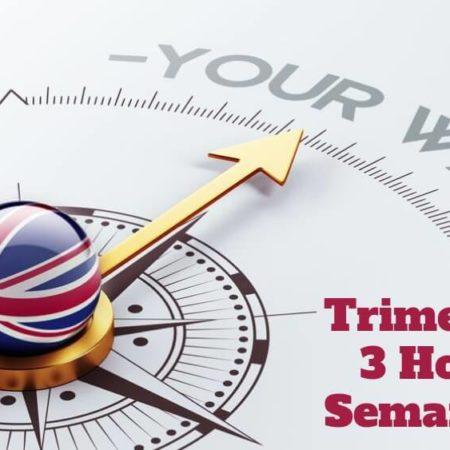 Curso de Inglés 3 horas semanales (Pago Trimestral)