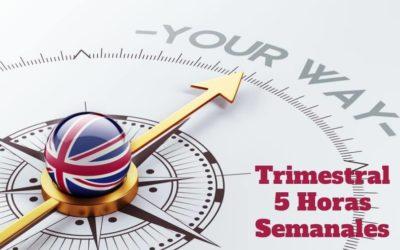 Curso de Inglés 5 horas semanales ( Pago Trimestral)