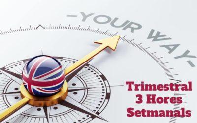 Curs d'Anglès 3 hores setmanals (Pagament Trimestral)