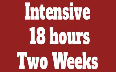 Individual Intensive Course 18 hours (Two Weeks)