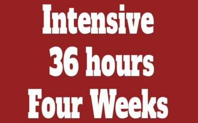 Individual Intensive Course 36 hours (Four Weeks)